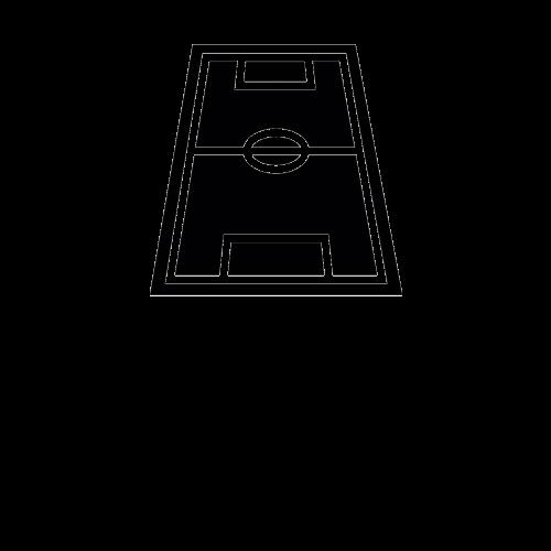 BOISKO do siatkówki i koszykówki